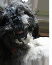 Muzzle Shih Tzu and other breeds