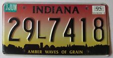 Indiana 1995 HAMILTON COUNTY AMBER WAVES OF GRAIN License Plate NICE # 29L7418