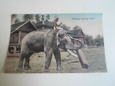 Vintage Nostalgic Colour Tinted Postcard Elephant Carrying Timber       §A1669