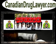 Canadian Drug Lawyer .com Border Patrol Criminal Website Domain Name URL Drugs