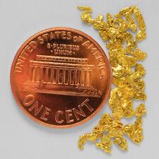 0.9531 Gram Alaska Natural Gold Nuggets --- (#57349-14) - Alaskan Gold Nuggets