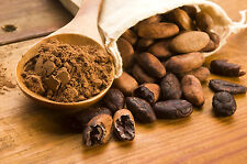 70gr/(2,5oz.)Organic100% RAW CACAO/COCOA POWDER/ NATURAL/GMO FREE/Free Shipping!