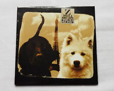 Dweezil & Ahmet ZAPPA Based on a true story FRENCH only cardsleeve CD SEALED