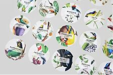 Nacoo's Kawaii Circle Label Point Sticker Set ( 48 pcs in tin case )- Fruit bird