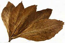 Kentucky Sun Cured Tabakblätter Rohtabak 1kg