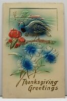Thanksgiving Greeting Airbrushed Turkey Apples & Flowers Embossed Postcard G12