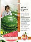 """Watermelon """"SUGAR MOUTH"""".Non GMO. Russian seeds"""