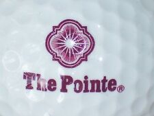 (1) The Pointe Golf Course Logo Golf Ball (Purple)