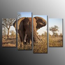 FRAMED Modern Animal Wall Art Painting Elephant Stretched Canvas Art Print-4pcs
