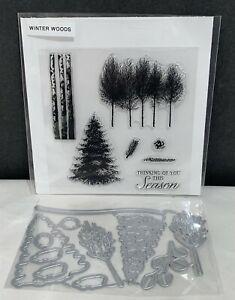 WINTER WOODS Nature Landscape Trees Acrylic Rubber Stamps Set Dies Lot
