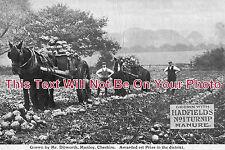 CH 199 - Farming, Manley, Cheshire - 6x4 Photo