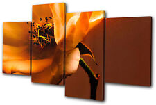Floral Flowers BOTANICAL MULTI DOEK WALL ART foto afdrukken