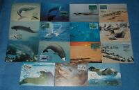 WWF OFFICIAL MAXIMUM CARDS MARINE LIFE WHALES & SEALS  - SELECT INDIVIDUAL CARD