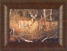 RIVER BOTTOM BUCK by Richard Plasschaert 10x13 FRAMED PRINT Whitetail Deer
