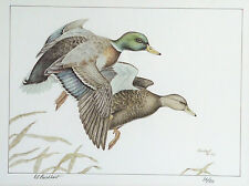 Dennis Burkhart Pennsylvania Ducks Unlimited Signed Limited Edition Print 1982