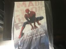 Hot Toys Amazing Spider-man 2 MMS 244 sixth scale MIB NEW !!!