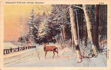 ANTIGO WISCONSIN'S WILD LIFE~DEER UNDER BEECHES IN SNOW POSTCARD 1942 PSTMK