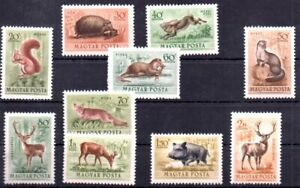 Old stamps of Hungary 1953 # 1285-1294    MNH  ANIMALS
