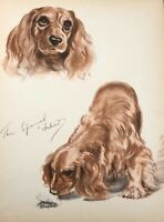 Diana Thorne's Dogs 1944 Cocker Spaniel Lithograph Print Portrait