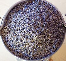 Dried Lavender - Aromatic