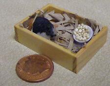 1:12 scale guinea pig at home with food maison de poupées miniature jardin accessoire