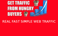 Real high quality organic website Traffic 100% Real Web Traffic ( SEO )