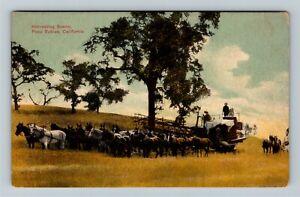 Paso Robles CA-California, Harvesting Farm Scene, Vintage Postcard