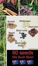 60 Seeds BUSH BEAN mixed varieties Broad Bean Snake Bean Eyed vegetable garden