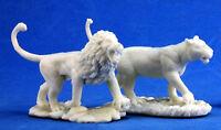 1x LIONS - BONES REAPER figurine miniature jdr d&d beast animaux lionne 77341
