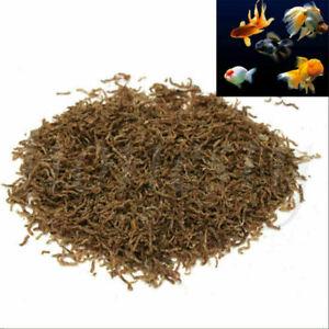 20g Freeze Dried Blood Worm Fresh Tropical Fish Discus Tetra Food Feed Aquarium