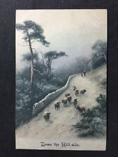 Vintage Postcard - Animals #A5 - Down The Hillside - Sheep 1918