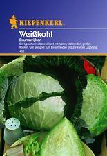 """Weißkohl """" Brunswijker """" zur Lagerung Saatgut Samen Gemüse für ca.50 Pflanzen"""