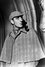 Basil Rathbone Sherlock Holmes Classic Pose 11x17 Mini Poster