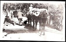 VINTAGE PHOTOGRAPH 1920S FISHING TRIP IMPERIAL LOS ANGELES CALIFORNIA OLD PHOTO