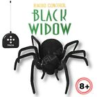Cute Sunlight RC Remote Control Large Black Widow Spider Toy Insect Wireless