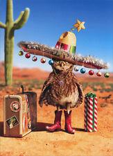 Holiday Owl - Box of 10 Funny Avanti Christmas Cards by Avanti Press