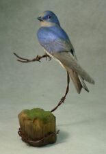 Female Purple Martin Original Wood Carving