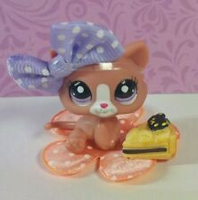 Littlest Pet Shop Baby Katze #2191 HTF Kitten little Cat RARE LPS + Accessoires