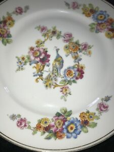 34 Pieces Vintage Czechoslovakia fine china peacock pattern dishes