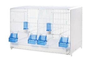 Double Breeding Cage 58cm Italian Quality Cage For Canary, Finch , Small Birds
