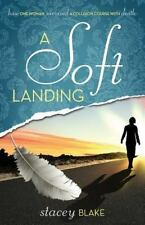 A Soft Landing: How One Woman Survived a Collision Course with Death (Paperback