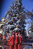 35mm Slide Vintage Walt Disney World Christmas Tree Orlando Florida FL WDW 1970s