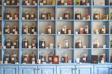 Heilkräuter Hausapotheke Sanfte Naturmedizin für zu Hause Samen zum Aussuchen