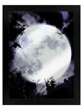 Tin Sign Celestial Moon Mirrored Framed Black 35x45cm