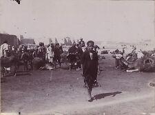 Maghreb Algérie Tunisie Maroc Vintage citrate ca 1900