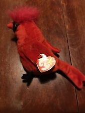 """TY Beanie Baby """"Mac"""" The Cardinal – Rare with Multiple (4) Errors!"""