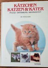 Kätzchen, Katzen und Kater: Pflege, Ernährung, Krankheiten