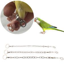 Cavigliera con piede a catena in acciaio inossidabile per pappagallo Cockatiels