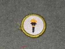 Public Health Merit Badge (unused)