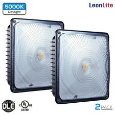 LEONLITE 2Pack 65W (300W-350W MH/HID Equiv.) Canopy Light FIXTURE 5000K 6700lm
